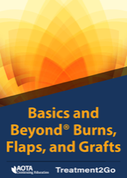 Image for Basics and Beyond ® Burns, Flaps, and Grafts