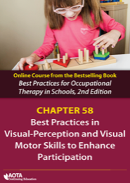 Image for Visual-Perception and Visual-Motor Skills to Enhance Participation (Chapter 58)