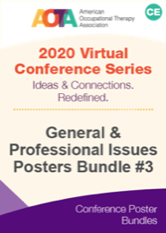 Image for General and Professional Issues Poster Bundle #3